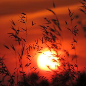 Antiparos sun set